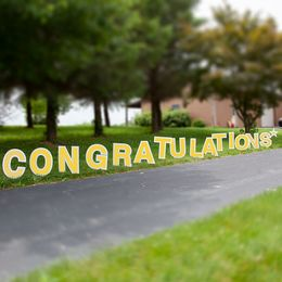 Congratulations Yard Letters