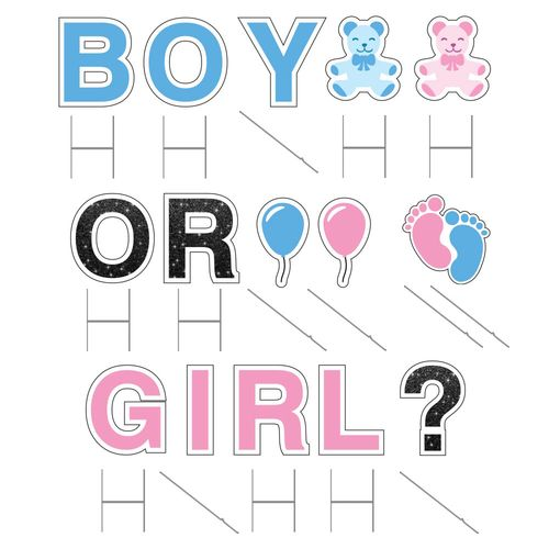 Gender Reveal signs with stakes